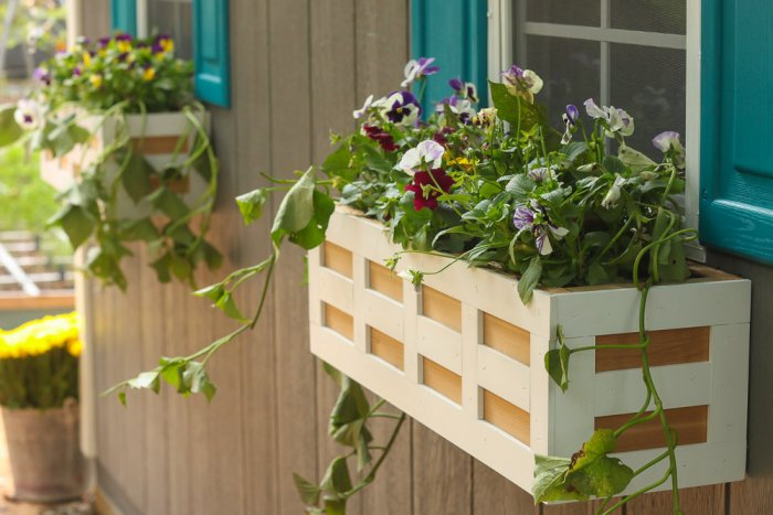 DIY Window Box Planter From Angie's List