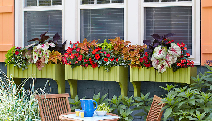 DIY Window Boxes From Lowes