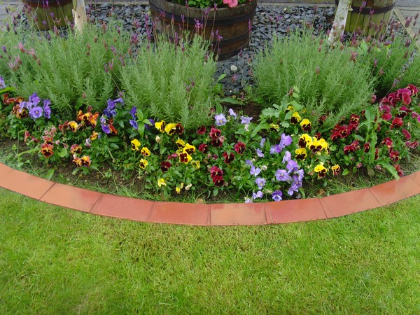 Garden Edging with Terracotta