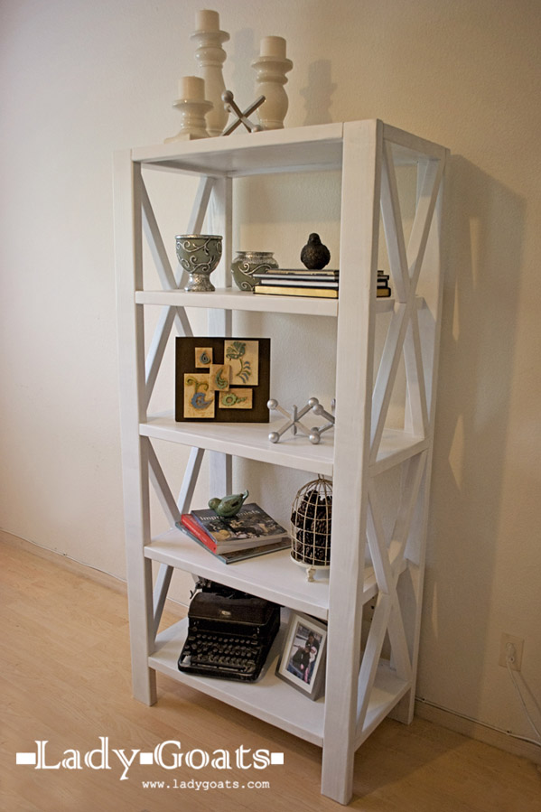 DIY Rustic X Tall Bookshelf