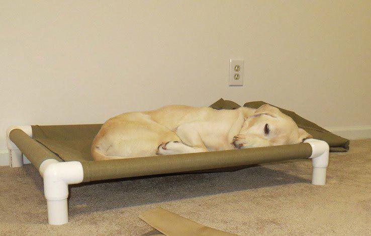 DIY PVC Dog Cot